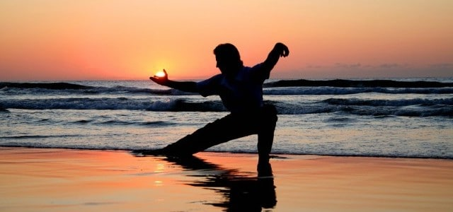 Image result for practica de tai chi chuan